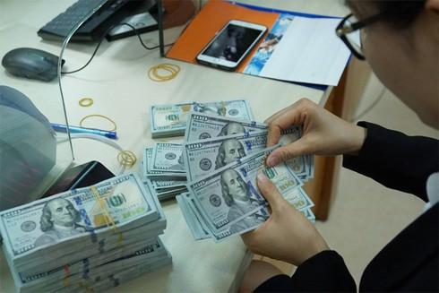 Hoạt động bán ra ngoại tệ và điều chỉnh tỷ giá trung tâm của Ngân hàng Nhà nước để đảm bảo cho sự ổn định về tỷ giá tiếp tục được kéo dài
