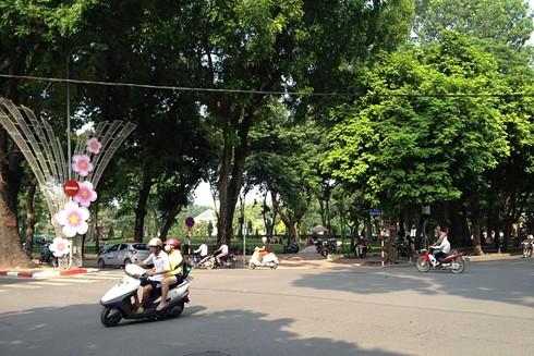 Người đi qua phố Trần Phú ấn tượng bởi con đường rộng rãi, thoáng mát, rợp bóng cây xanh