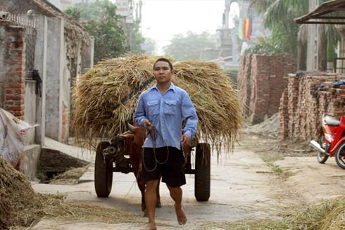 Các làng thuần nông đang dần thay đổi sang mô hình kinh doanh dịch vụ