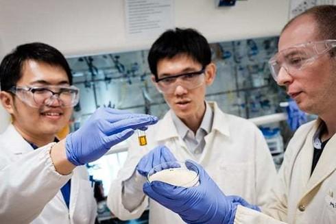 Nhựa được chuyển thành axit fomic, có thể được dùng cho nhà máy điện