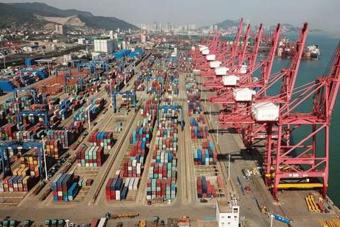 Với tổng kim ngạch xuất nhập khẩu xấp xỉ 517 tỷ USD, thặng dư thương mại gần 10 tỷ USD, Việt Nam chiếm thứ hạng cao trên bản đồ xuất nhập khẩu thế giới