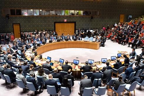 Việt Nam đã sẵn sàng vượt qua các thách thức để đảm nhiệm thành công nhiệm kỳ Ủy viên không thường trực Hội đồng Bảo an Liên hợp quốc 2020-2021