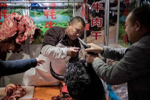 Trung Quốc: Đóng cửa ngay thị trường động vật hoang dã để tránh họa lớn ảnh 2