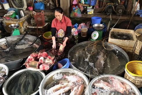 Các chợ dân sinh đầy ắp hàng hóa, không hề có chuyện khan hiếm như tin đồn thất thiệt