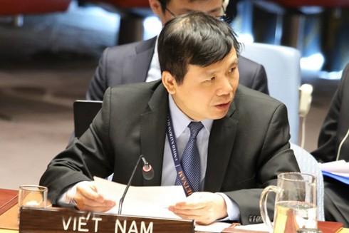 Đại sứ Việt Nam tại Liên hợp quốc Đặng Đình Quý phát biểu tại phiên thảo luận