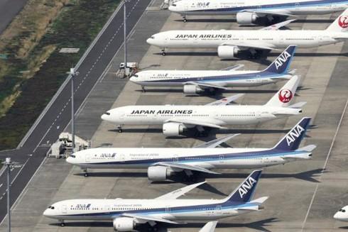 Nhật Bản đang dần nối lại các hoạt động đi lại quốc tế