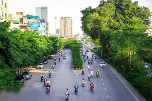 Hệ thống cây xanh tại Hà Nội trong gần 5 năm qua đã có sự thay đổi rõ rệt (Trong ảnh: Đường vành đai 2, đoạn nút giao đường Hoàng Quốc Việt với đường Bưởi được phủ xanh sau một thời gian ngắn). Ảnh: LAM THANH