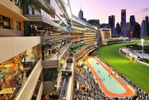 Không nhiều người biết, dưới trường đua ngựa Happy Valley nổi tiếng Hồng Kông là một bể chứa nước mưa khổng lồ