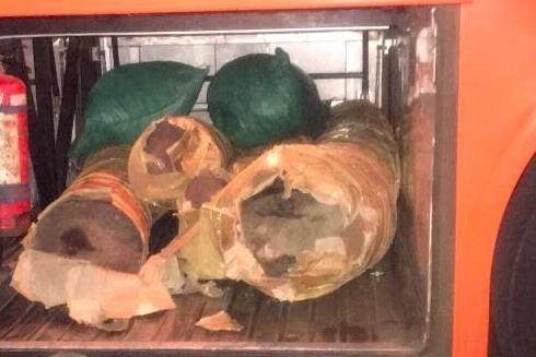 Số gỗ lậu trên xe khách thuộc nhóm 1