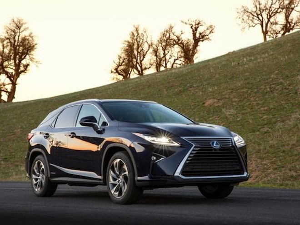 Xe thể thao đa dụng Lexus RX