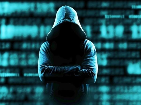Đức lo trở thành nạn nhân của hacker Nga ảnh 1