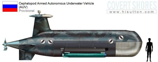 Bản mô phỏng tàu ngầm Cephalopod của Nga xuất hiện trên mạng internet
