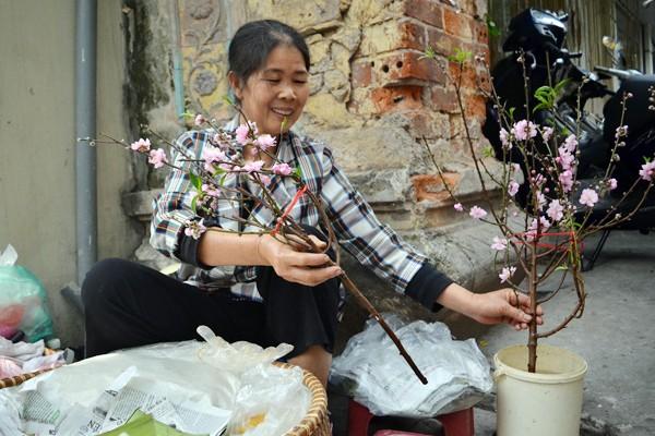 Hoa đào mang xuân xuống phố ảnh 5