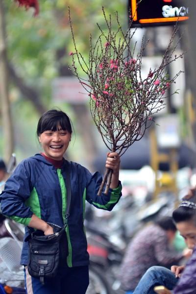 Hoa đào mang xuân xuống phố ảnh 7