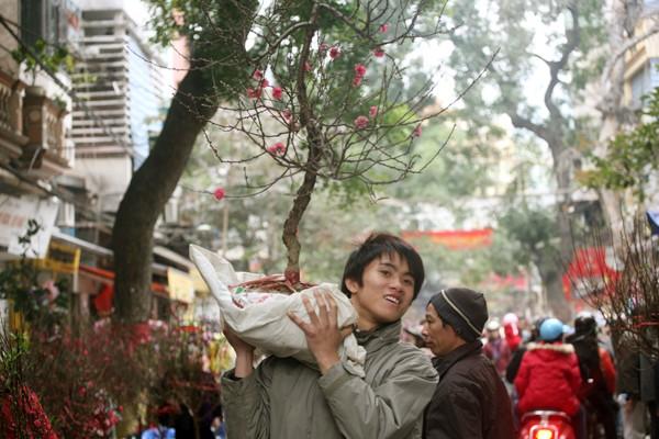 Rộn ràng sắc đào, chợ hoa Hàng Lược ảnh 7