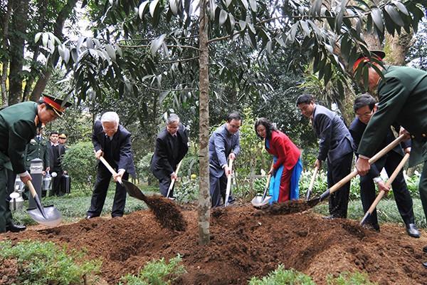 Tổng Bí thư Nguyễn Phú Trọng trồng cây nhớ ơn Bác Hồ tại Khu di tích K9, Ba Vì ảnh 2