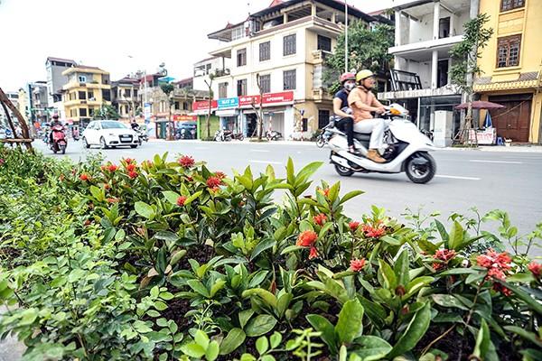 Cận cảnh tuyến đường đô thị kiểu mẫu tại Hà Nội trước ngày khánh thành ảnh 6