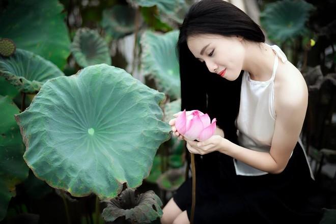 Thiếu nữ áo yếm Hà Thành e ấp giữa đầm sen ảnh 8