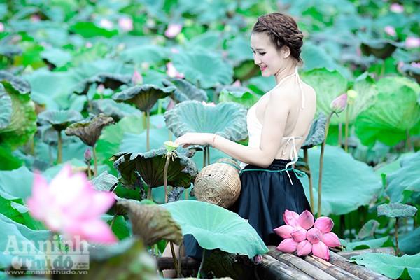 Thiếu nữ áo yếm Hà Thành e ấp giữa đầm sen ảnh 4