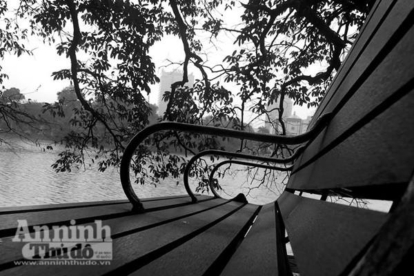 Ngắm mùa thu Hà Nội tuyệt đẹp qua những bức ảnh đen trắng ảnh 3