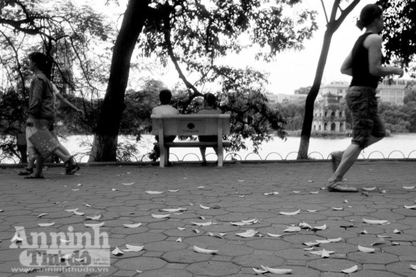 Ngắm mùa thu Hà Nội tuyệt đẹp qua những bức ảnh đen trắng ảnh 7
