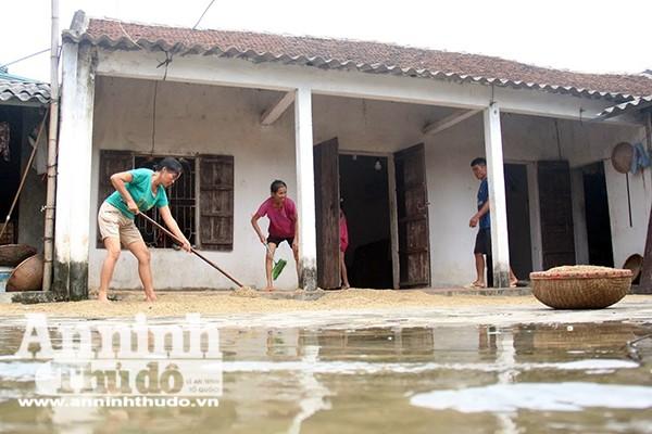 Người dân ở các điểm nước rút đang dần ổn định cuộc sống