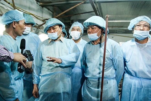Thủ tướng Nguyễn Xuân Phúc biểu dương một gia đình chăn nuôi có lợn nhiễm bệnh nhưng đã tuân thủ đúng quy trình dập dịch