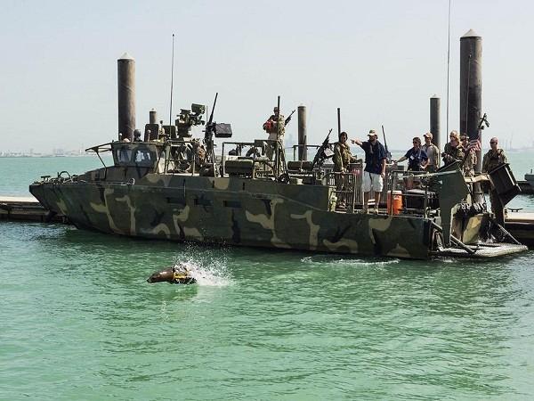 """Khám phá """"lực lượng đặc nhiệm cá heo, sư tử biển"""" của quân đội Mỹ ảnh 3"""