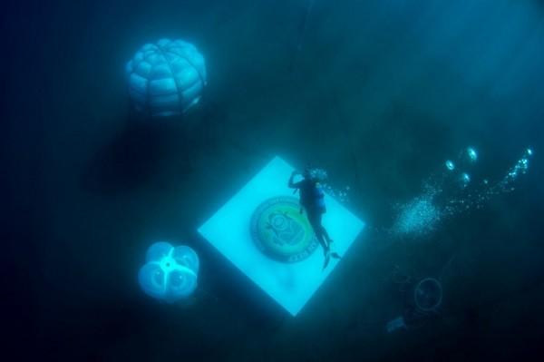Trồng rau củ dưới đáy biển, tại sao không? ảnh 4