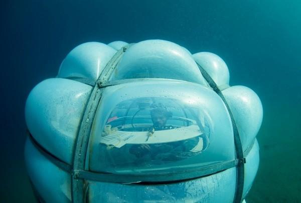 Trồng rau củ dưới đáy biển, tại sao không? ảnh 7