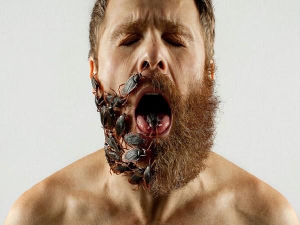 """Khám phá bộ ảnh độc đáo: """"Một nửa bộ râu"""" ảnh 6"""