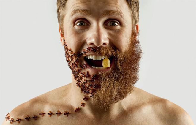 """Khám phá bộ ảnh độc đáo: """"Một nửa bộ râu"""" ảnh 4"""