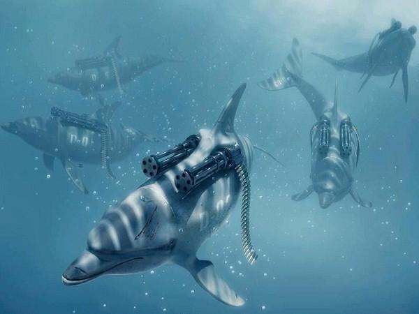 Nga tìm mua 5 cá heo để thực hiện nhiệm vụ đặc biệt tại biển Đen