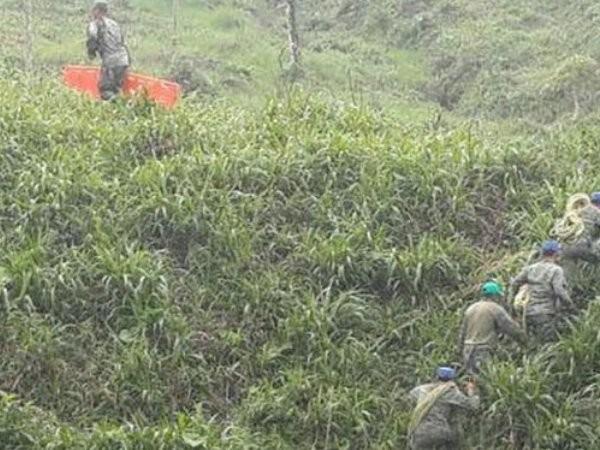Công tác tìm kiếm cứu hộ diễn ra sau khi máy bay quân sự Ecuador rơi ở vùng rừng Amazon.