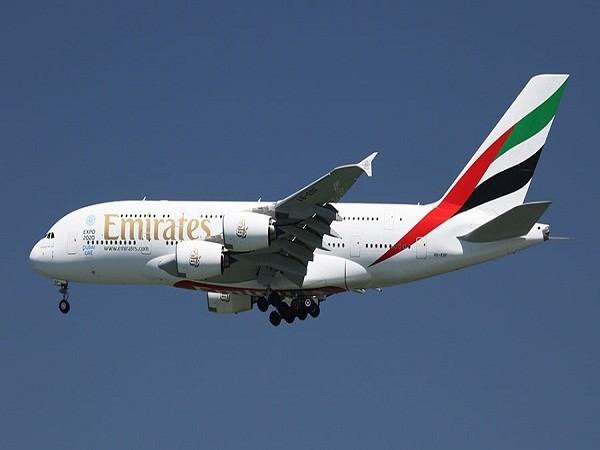 Emirates là một trong những hãng hàng không có tốc độ phát triển nhanh nhất thế giới, hiện đã sở hữu đội bay gồm 234 máy bay