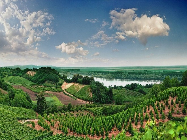 Phong cảnh ở Vojvodina, Serbia
