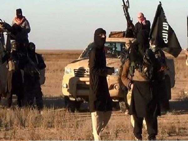 Syria: Hơn 400 phiến quân thuộc 22 nhóm khủng bố bị tiêu diệt ở Aleppo ảnh 1