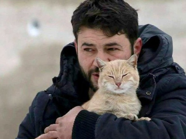 Syria: Mặc chiến tranh, người đàn ông vẫn ở lại Aleppo chăm mèo ảnh 1
