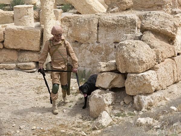 Nga phát hiện hơn 120 thiết bị nổ và 2 kho đạn dược ở Palmyra ảnh 1
