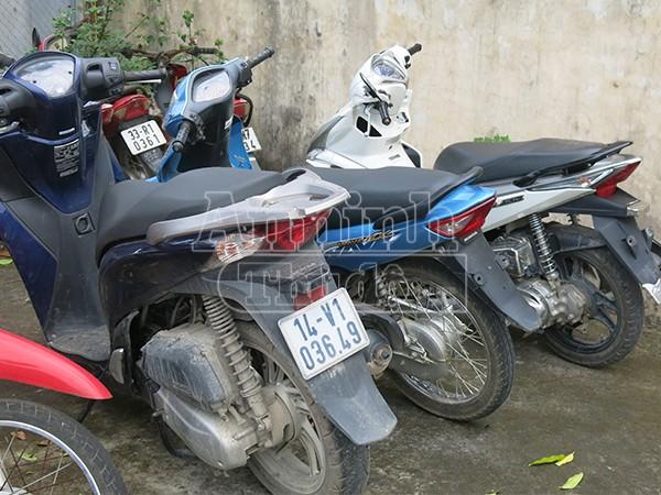 Nhiều xe máy đã được thu hồi để trao trả lại cho chủ sở hữu