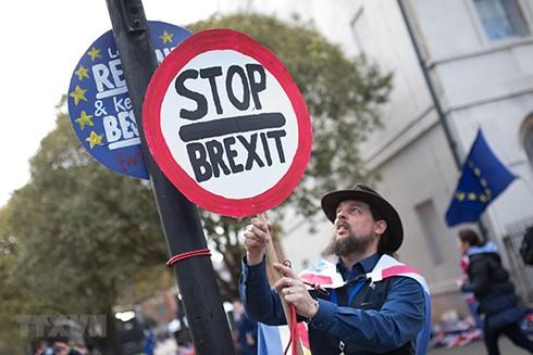 Người dân tuần hành phản đối Brexit bên ngoài tòa nhà Quốc hội ở London, Anh, ngày 11-3-2019. (Nguồn: THX/TTXVN)