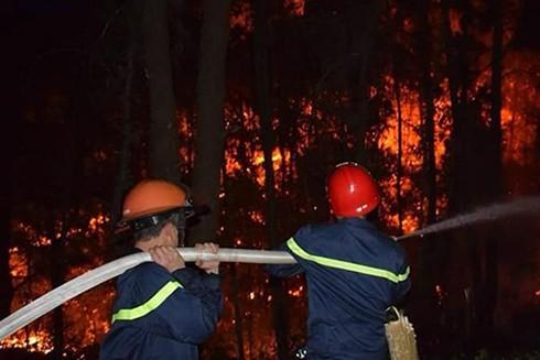 Đến rạng sáng 29-6, đám cháy mới được dập tắt
