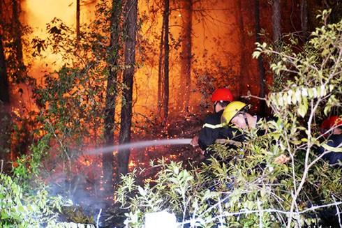 Lực lượng chức năng nỗ lực dập đám cháy rừng nghi do người dân đốt vàng mã
