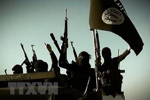 Các tay súng IS. (Ảnh: AFP/TTXVN)