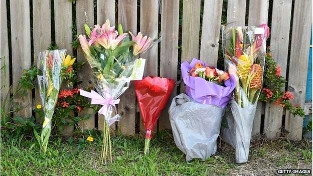 Hoa được đặt bên tường rào của ngôi nhà