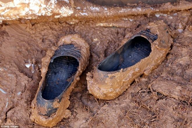 Cuộc sống ngập ngụa trong bùn của người tị nạn Syria ảnh 6
