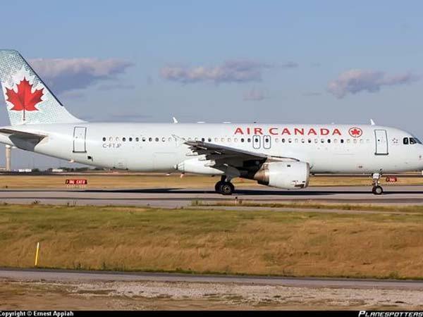 Máy bay của Canada Airline gặp nạn, 22 người bị thương ảnh 1
