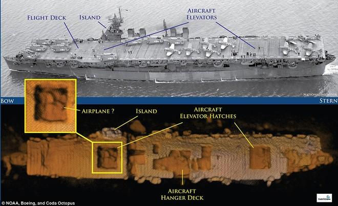 Tàu sân bay Mỹ nguyên vẹn dưới đáy biển sau hơn 6 thập kỷ ảnh 1