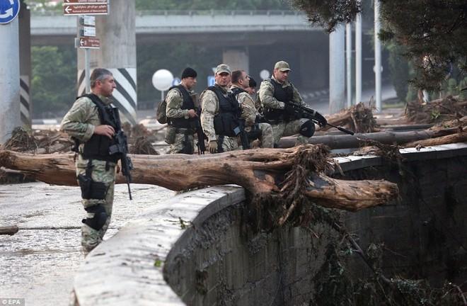 Sau lũ lụt, hổ, báo, sư tử, cá sấu... tràn xuống đường phố ảnh 9