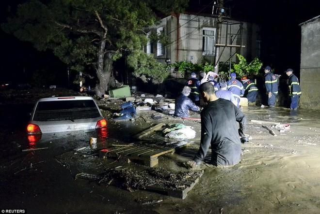 Sau lũ lụt, hổ, báo, sư tử, cá sấu... tràn xuống đường phố ảnh 6
